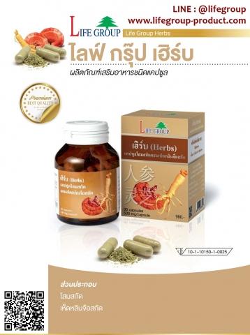 ไลฟ์กรุ๊ป เฮิร์บ  Life Group Herbs